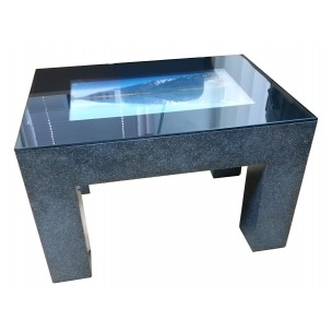 Interactive touch tables, display monitors (on request)